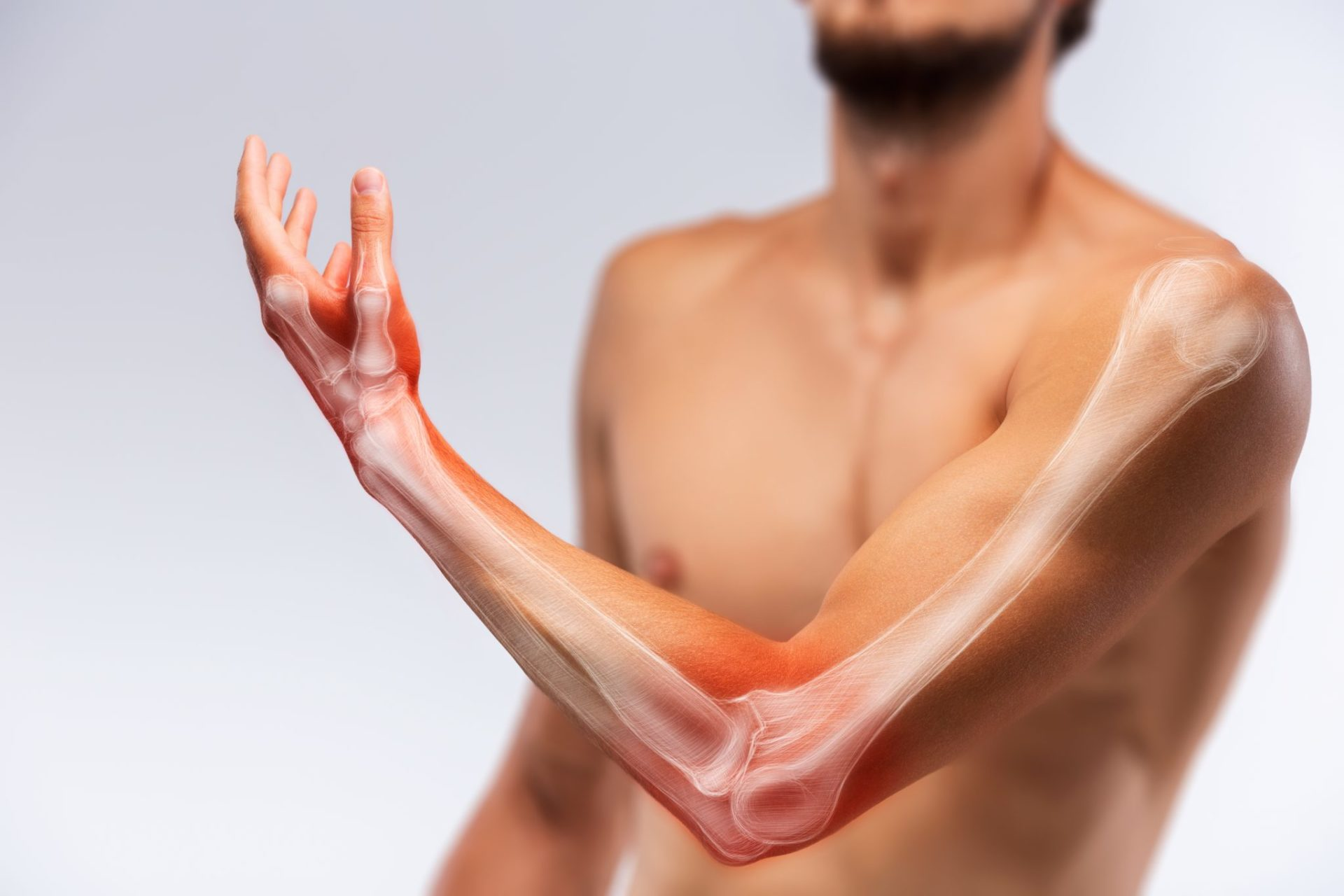 anatomia-braccio